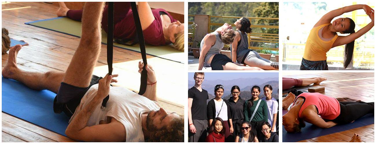 300 Hour Yoga Teacher Training in Dharamshala (High Level Yoga Training)