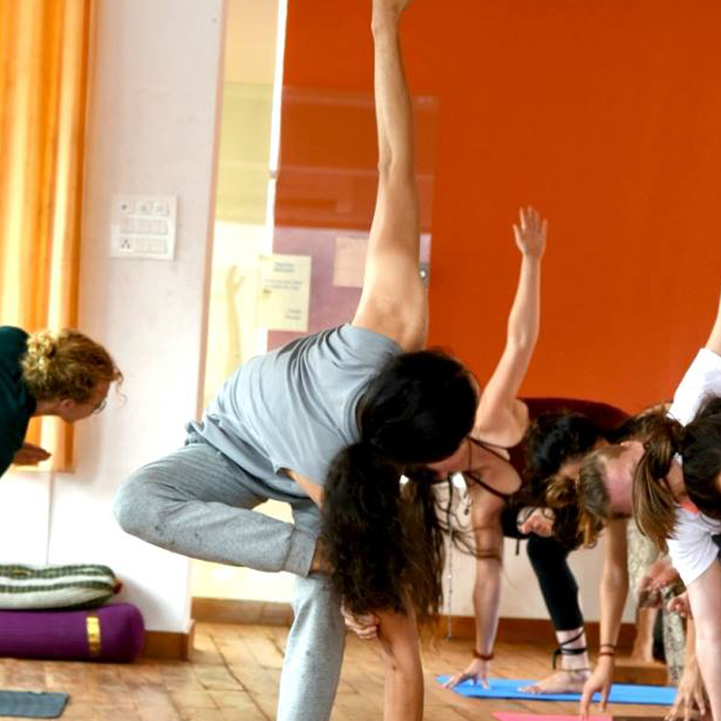 300 Hour Yoga Teacher Training in Dharamshala (High Level Yoga Training)