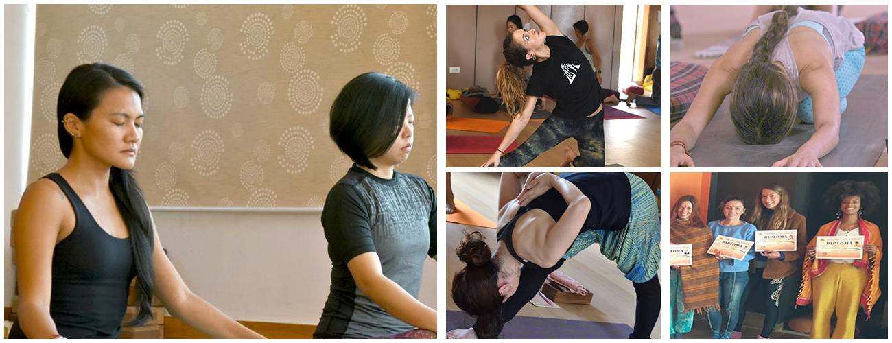 500 Hour Yoga Teacher Training in Dharamshala (Advanced Course)