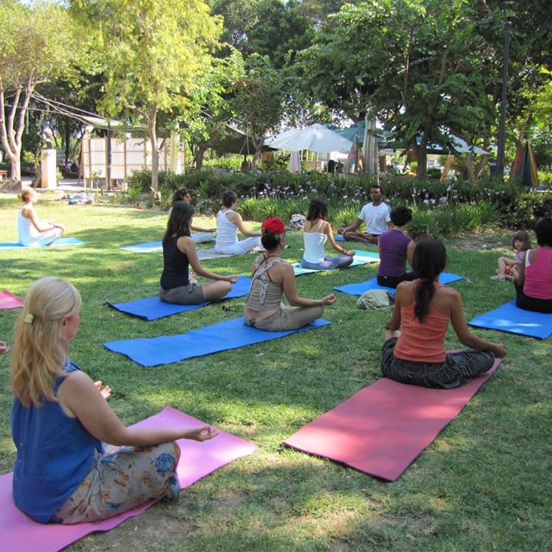 500 Hour Yoga Teacher Training in Rishikesh (Professional Yoga TTC)