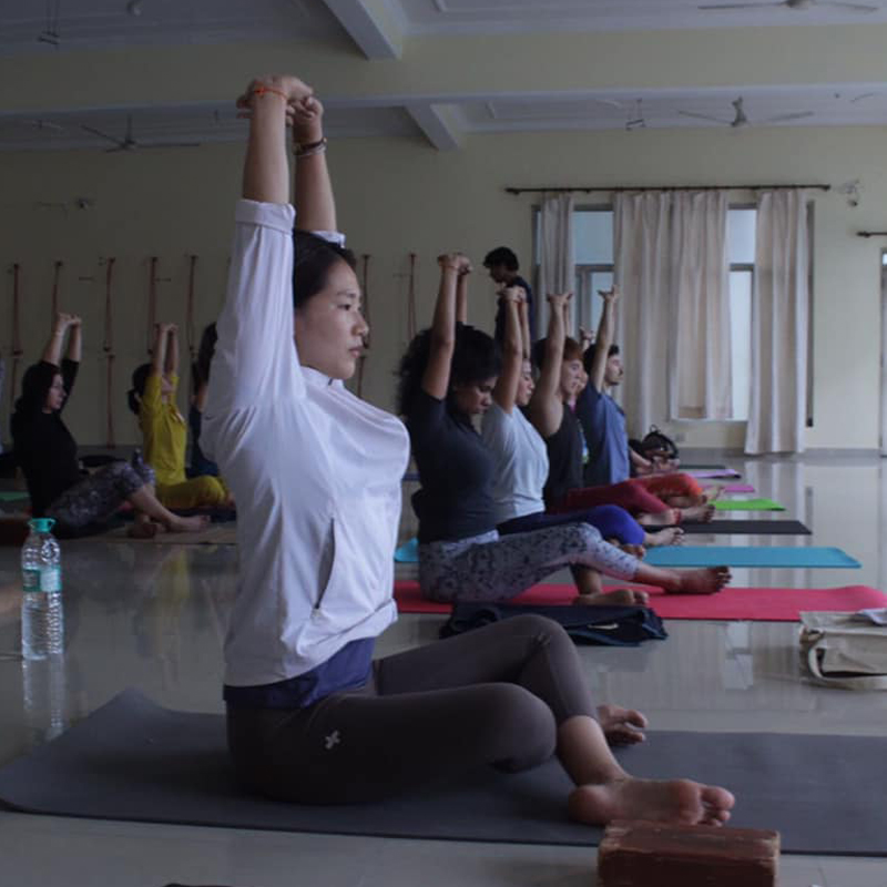 50 & 100 hour Yoga Retreat in Rishikesh