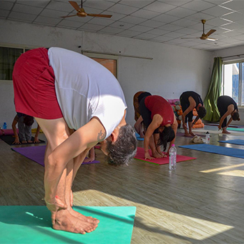 300 Hour Yoga Teacher Training in Rishikesh (Advanced Yoga TTC)